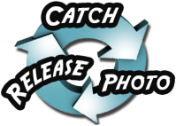 Catch-Photo-Release Bass Fishing